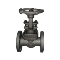 BOLTED BONNET STEEL GATE VALVE